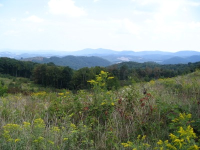 View of Alleghany County